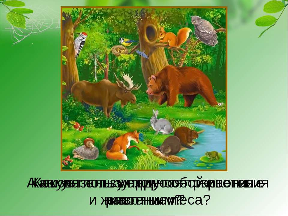 Фото связанной в лесу 28 фотография