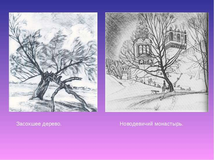 Засохшее дерево. Новодевичий монастырь.