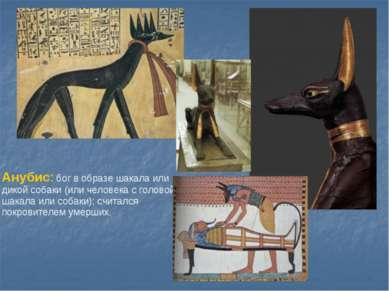 Анубис: бог в образе шакала или дикой собаки (или человека с головой шакала и...