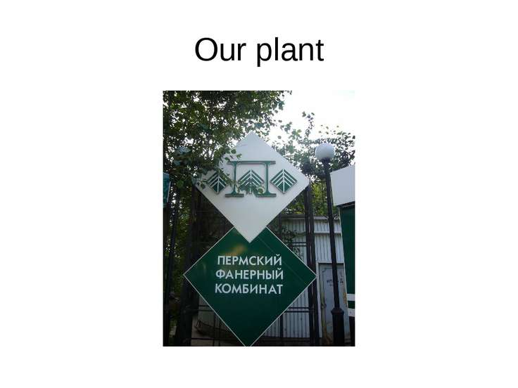 Our plant