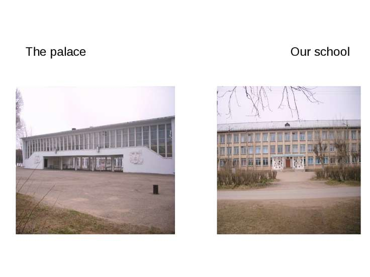 The palace Our school