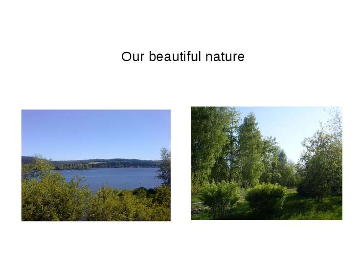 Our beautiful nature