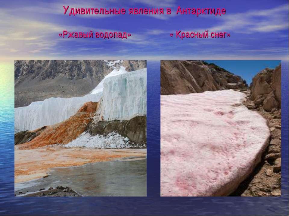 Удивительные явления в Антарктиде «Ржавый водопад» « Красный снег»