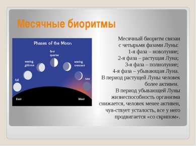 Месячные биоритмы Месячный биоритм связан счетырьмя фазами Луны: 1-я фаза – ...