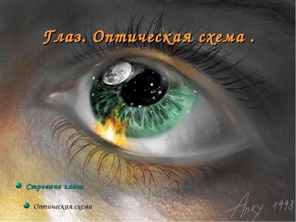 Глаз. Оптическая схема . Строение глаза Оптическая схема