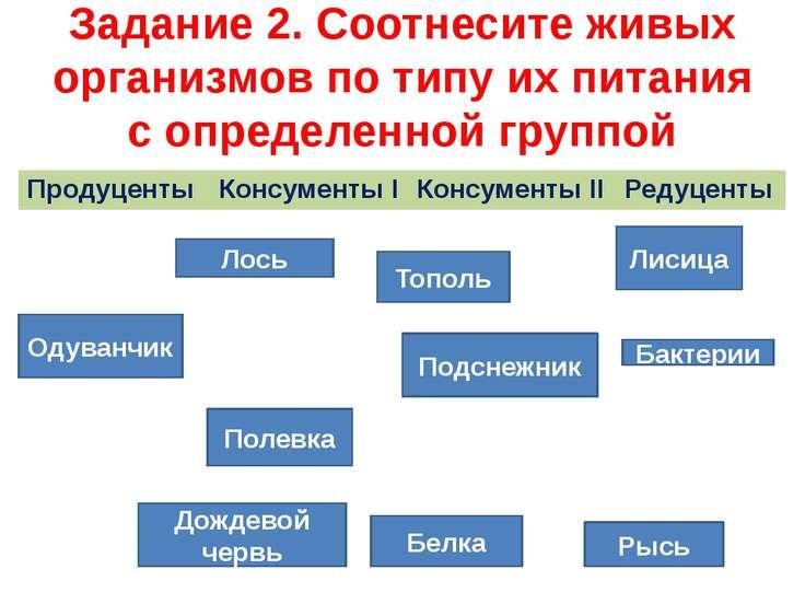 Задание 2. Соотнесите живых организмов по типу их питания с определенной груп...