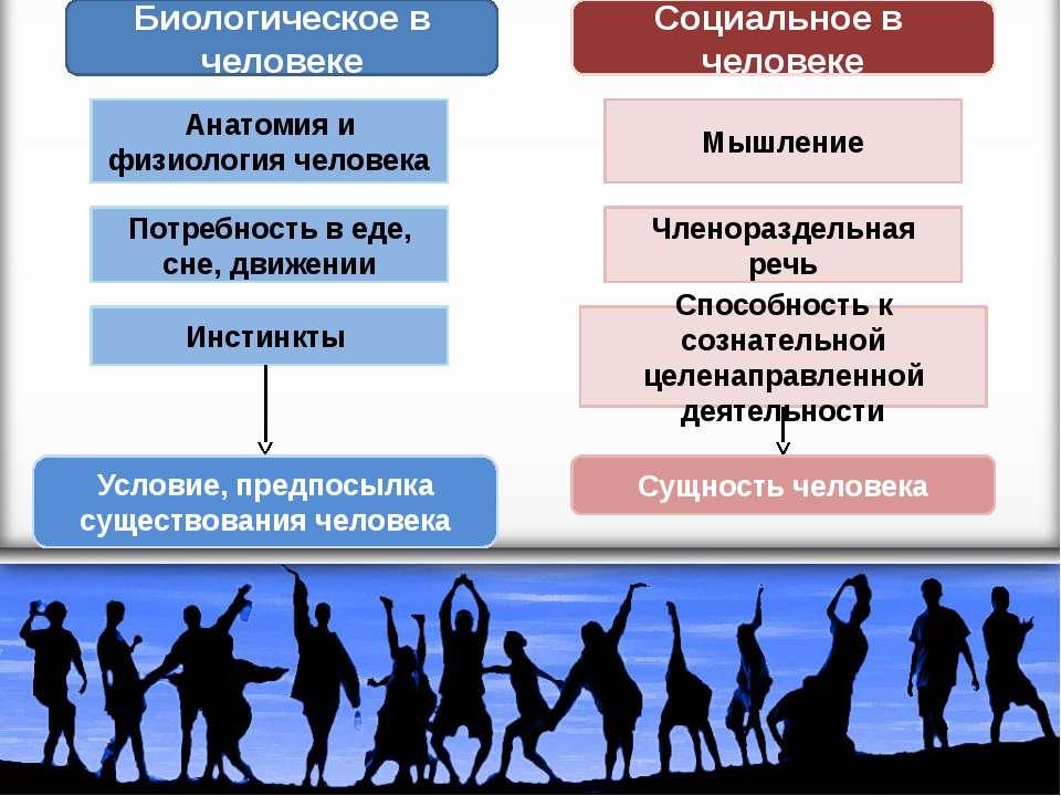 Биологическое в человеке Социальное в человеке Анатомия и физиология человека...
