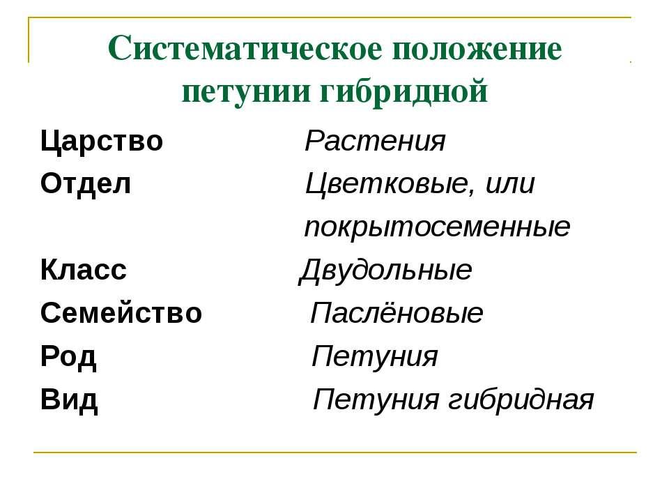 Систематическое положение петунии гибридной Царство Растения Отдел Цветковые,...