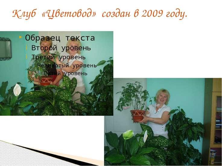 Клуб «Цветовод» создан в 2009 году.