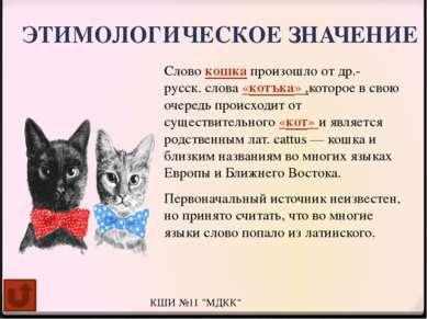 СУЕВЕРИЯ Кошки считаются хранительницами домашнего очага и уюта, поэтому на н...
