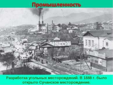 Разработка угольных месторождений. В 1888 г. было открыто Сучанское месторожд...