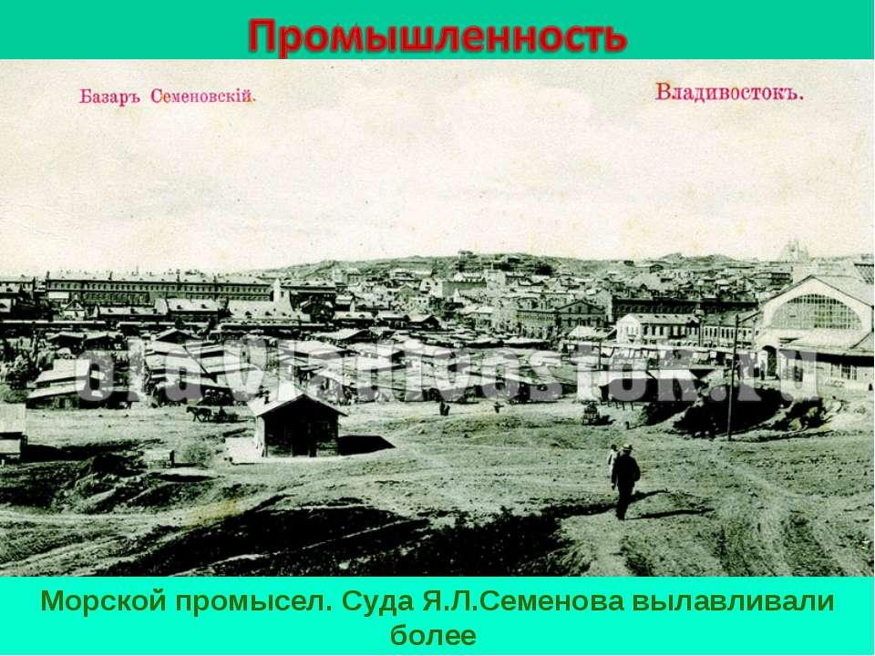 Морской промысел. Суда Я.Л.Семенова вылавливали более 1,2 млн. пудов рыбы и м...