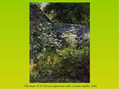 Шишкин И.И. Уголок заросшего сада. Сныть-трава. 1884.