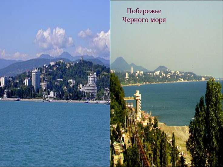 Побережье Черного моря