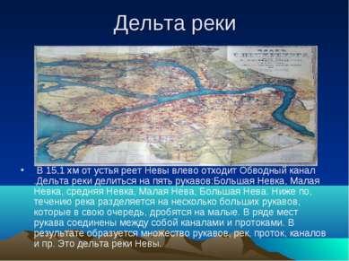 Дельта реки В 15,1 хм от устья реет Невы влево отходит Обводный канал .Дельта...