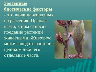 Зоогенные биотические факторы - это влияние животных на растения. Прежде всег...