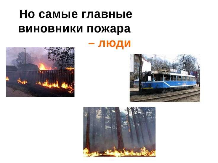 Но самые главные виновники пожара – люди