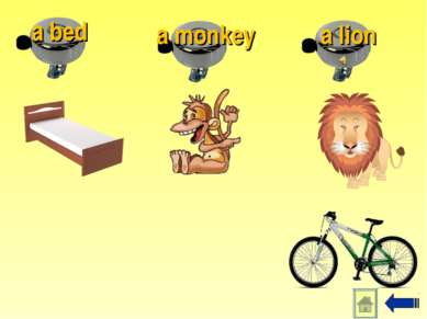 a lion a monkey a bed