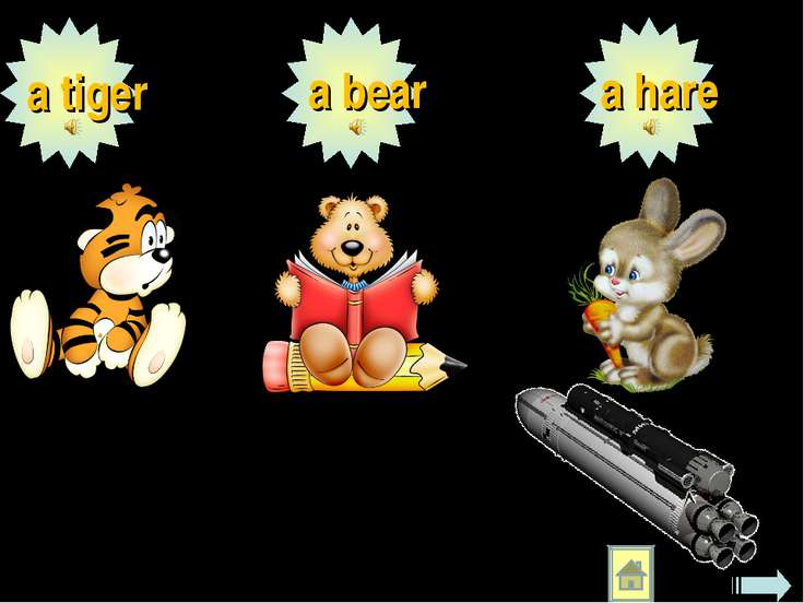a tiger a bear a hare