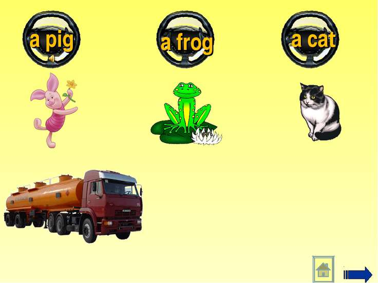 a pig a frog a cat