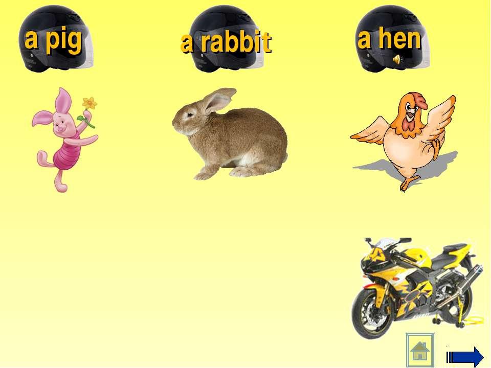 a hen a rabbit a pig