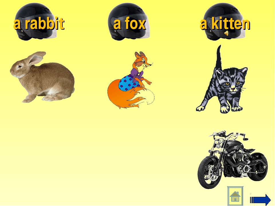 a kitten a fox a rabbit