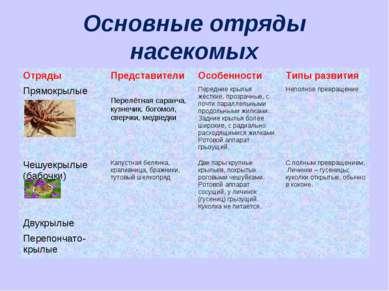 Основные отряды насекомых Отряды Представители Особенности Типы развития Прям...