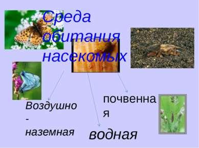 Среда обитания насекомых Воздушно-наземная почвенная водная
