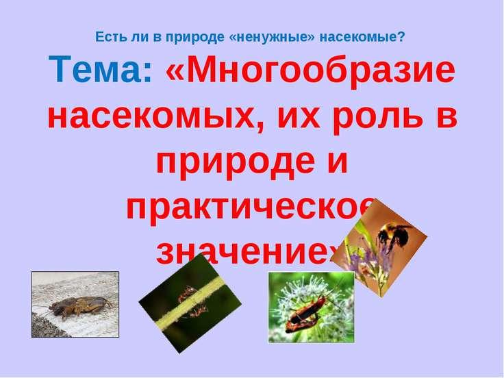 Есть ли в природе «ненужные» насекомые? Тема: «Многообразие насекомых, их рол...