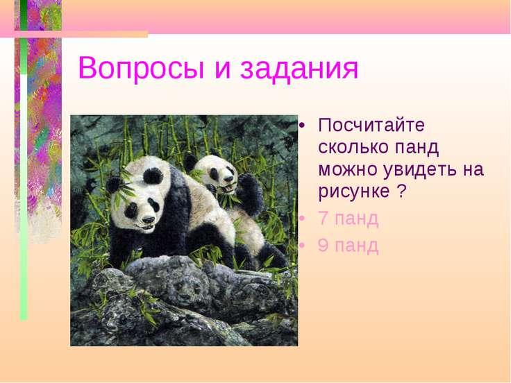 Вопросы и задания Посчитайте сколько панд можно увидеть на рисунке ? 7 панд 9...