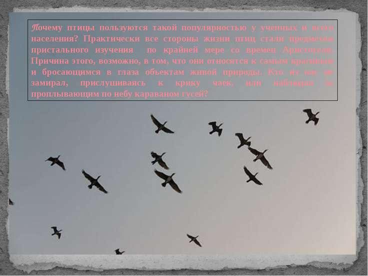 Почему птицы пользуются такой популярностью у ученных и всего населения? Прак...