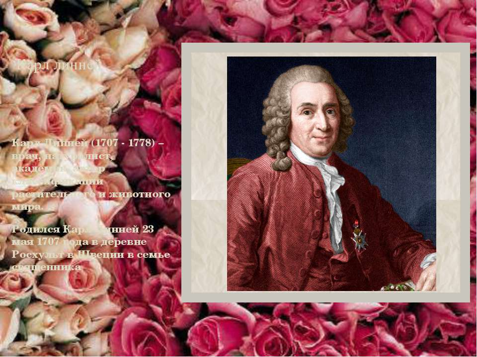 Карл линней Карл Линней (1707 - 1778) – врач, натуралист, академик, автор кла...
