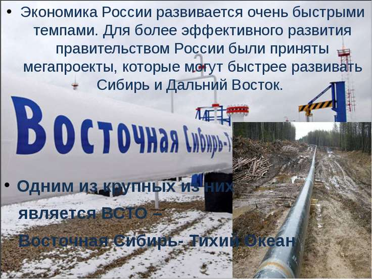 Экономика России развивается очень быстрыми темпами. Для более эффективного р...