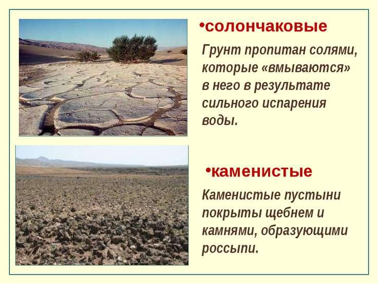 каменистые Каменистые пустыни покрыты щебнем и камнями, образующими россыпи. ...