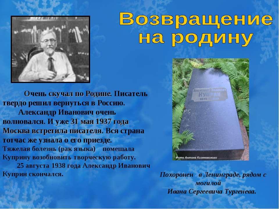 Очень скучал по Родине. Писатель твердо решил вернуться в Россию. Александр И...