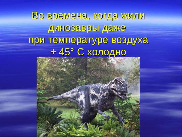 Во времена, когда жили динозавры даже при температуре воздуха + 45° С холодно
