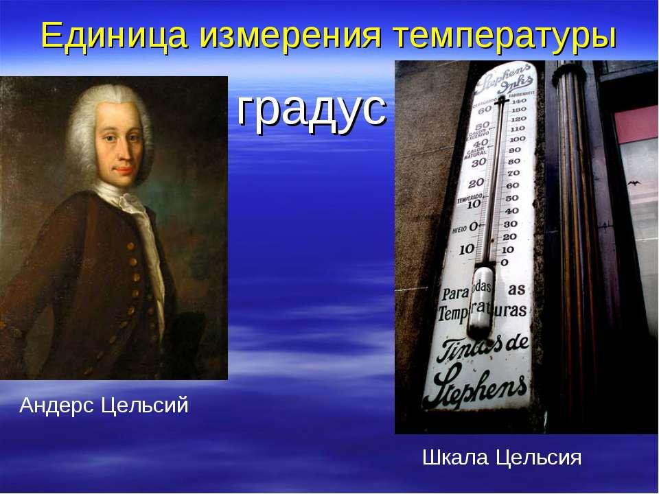 Единица измерения температуры градус Андерс Цельсий Шкала Цельсия
