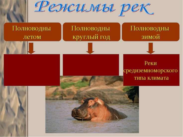 Полноводны летом Полноводны круглый год Полноводны зимой Реки средиземноморск...