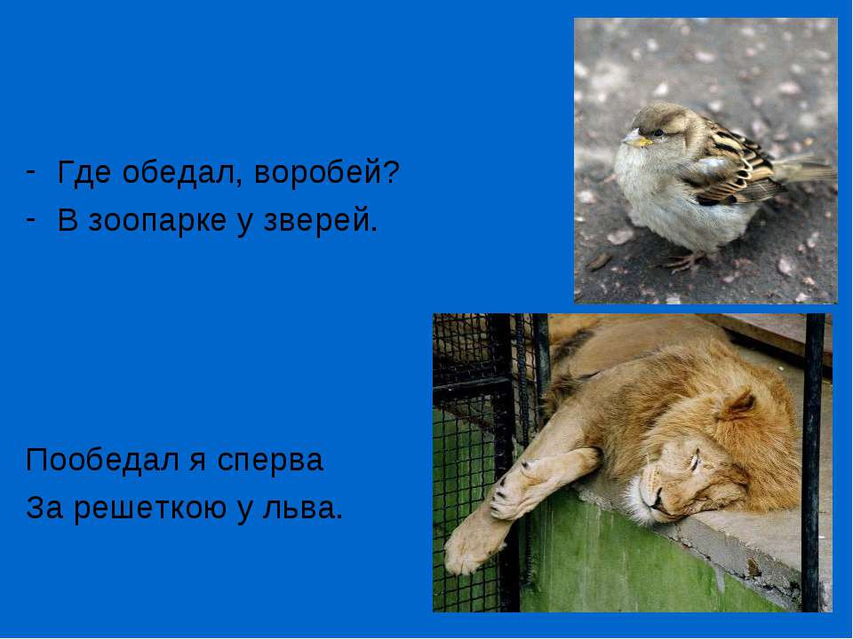 Где обедал, воробей? В зоопарке у зверей. Пообедал я сперва За решеткою у льва.