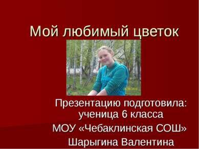 Мой любимый цветок Презентацию подготовила: ученица 6 класса МОУ «Чебаклинска...