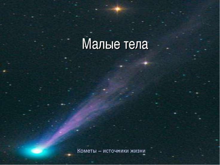 Малые тела Кометы – источники жизни