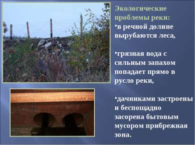 Экологические проблемы реки: в речной долине вырубаются леса, грязная вода с ...