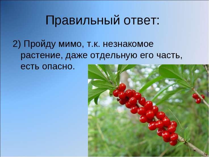 Правильный ответ: 2) Пройду мимо, т.к. незнакомое растение, даже отдельную ег...