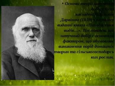 Основи теорії штучного добору були закладеніЧарльзом Дарвіном(1859) у першо...