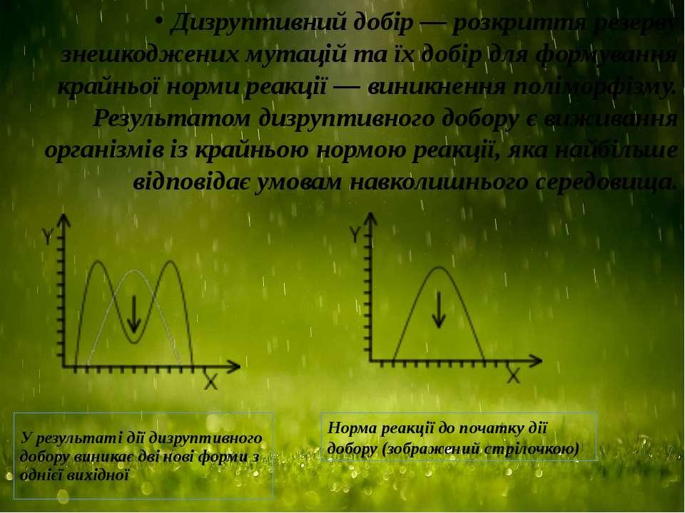 У результаті дії дизруптивного добору виникає дві нові форми з однієї вихідно...