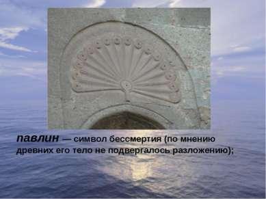 павлин— символ бессмертия (по мнению древних его тело не подвергалось разлож...