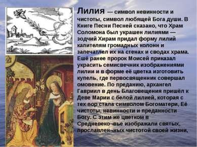 Лилия — символ невинности и чистоты, символ любящей Бога души. В Книге Песни ...