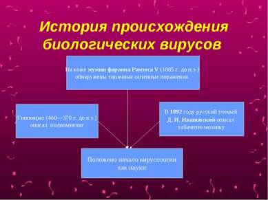 История происхождения биологических вирусов На коже мумии фараона Рамзеса V (...