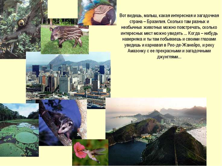 Вот видишь, малыш, какая интересная и загадочная страна – Бразилия. Сколько т...