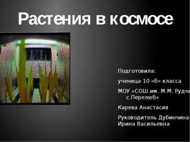 Подготовила: ученица 10 «б» класса МОУ «СОШ им. М.М. Рудченко с.Перелюб» Каре...
